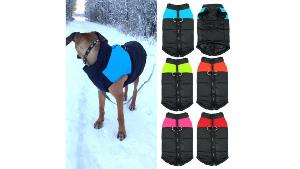 WIN: Premium Winter Dog Vest""